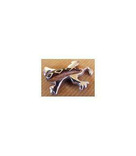 Mini Magnet Salamandre